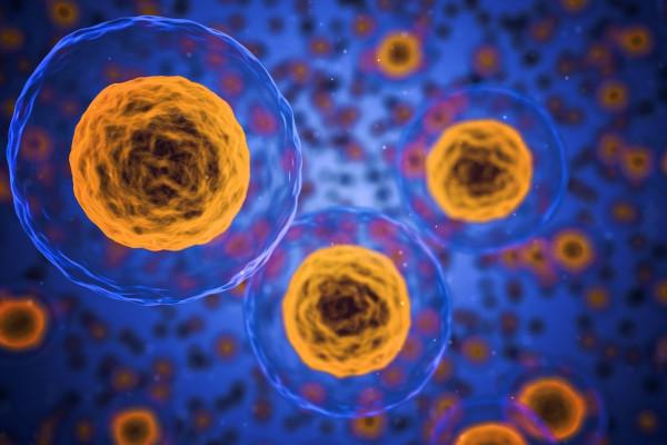 Most talán tényleg: hatalmas esély a rák gyógyításában