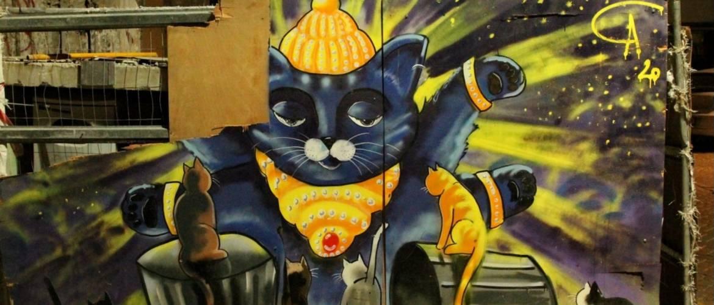 A tel-avivi macskák őrangyalai