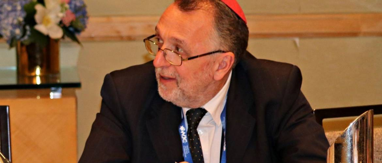 Heisler András: Nagyra értékeljük a magyar kormány partnerségét