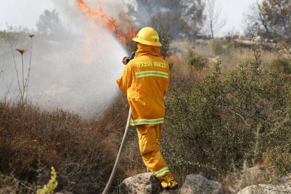 Erdő- és bozóttüzek tombolnak Észak-Izraelben, Galileában