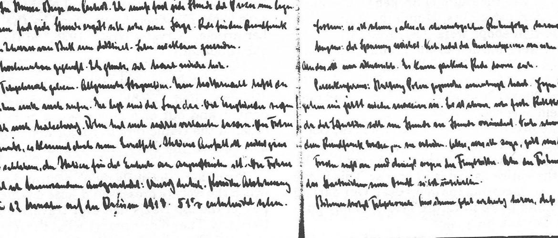 Goebbels naplója a Holokauszt Emlékközpont könyvtárában