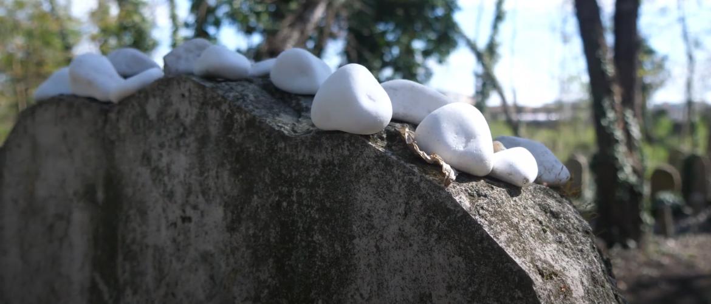 Szakmai díj a Salgótarjáni utcai zsidó temető gondozásáért