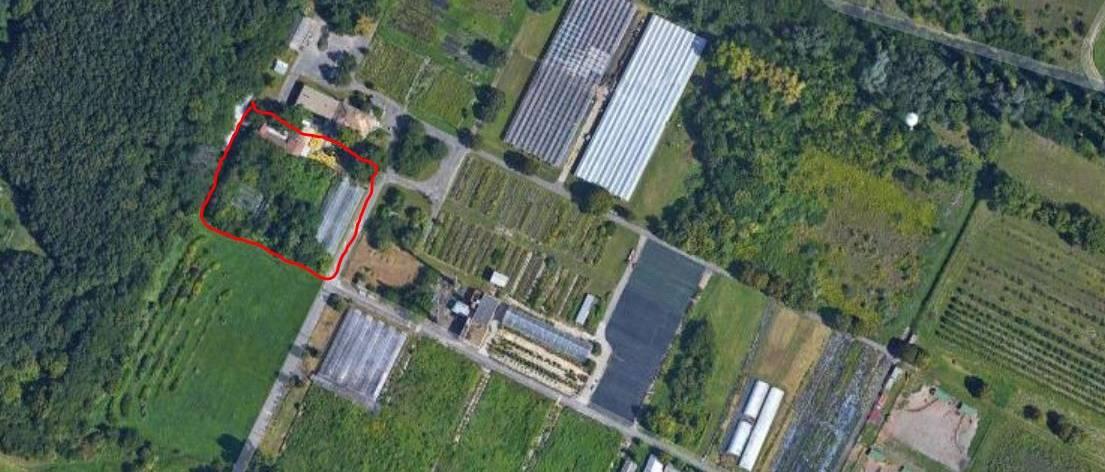 Virágzás előtt: Ötletpályázat a zsidó kertészeti telep hasznosítására