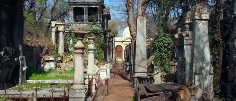 Maradj otthon és sétálj velünk a Salgótarjáni utcai zsidó temető rejtett ösvényein