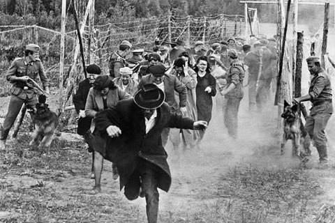 Babij Jar tragédiája: 80 éve történt a holokauszt egyik legelső és legborzalmasabb tömegmészárlása