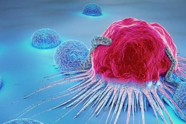 Elpusztítja a rákos sejteket az izraeliek új génszerkesztő rendszere