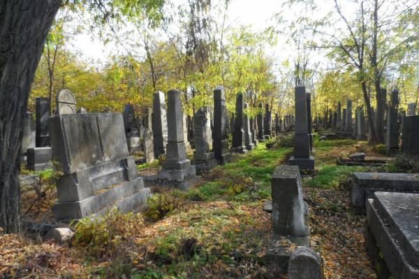Akció a Kozma utcai zsidó temető régi parcellájának megtisztítására