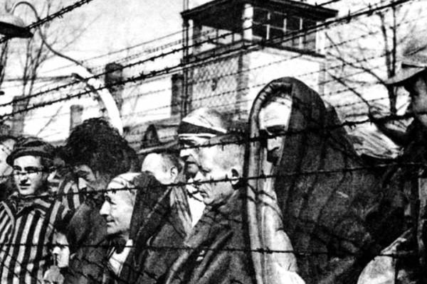 Egy kutatás szerint három hónap alatt ölték meg a holokauszt áldozatainak egynegyedét