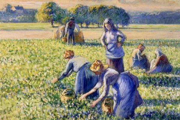 Pissarro-ügy: A zsidó műgyűjtő örököseinek javára döntött a bíróság