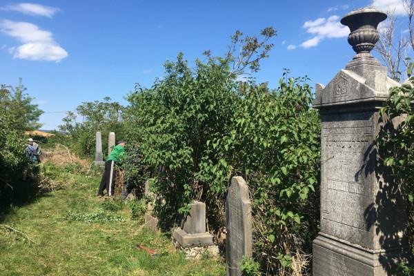 Megtisztították a tapolcai zsidó temetőt, köszönet az önkénteseknek