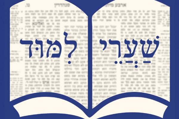 Megjelent a Bevezetés a Talmud tanulmányozásába című könyv