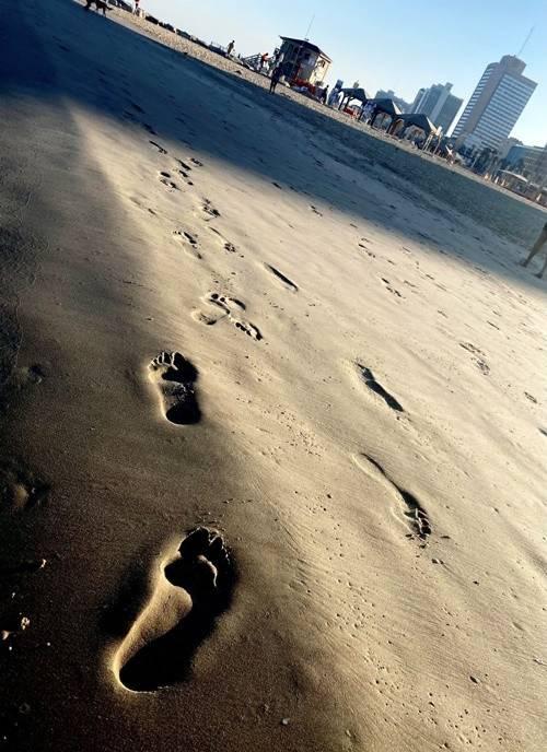 sillo-tengerpart-3.jpg