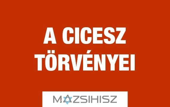 torvenyek_cicesz.jpg