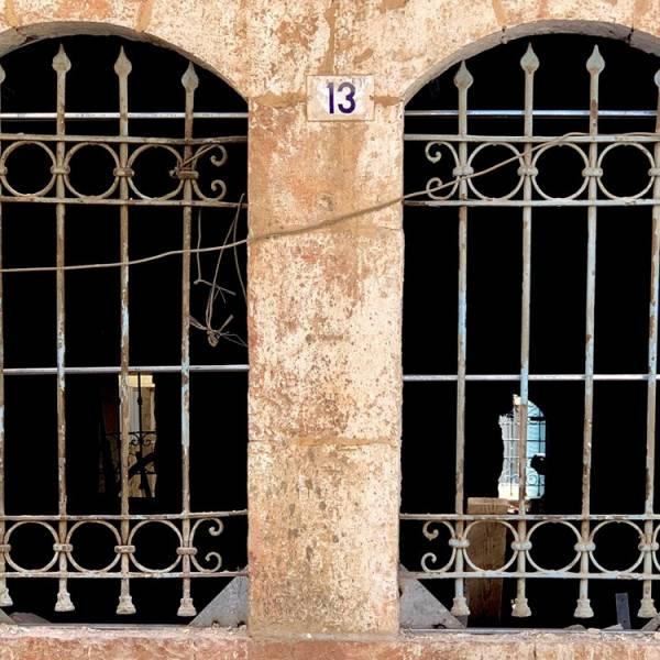 ladino-9.jpg